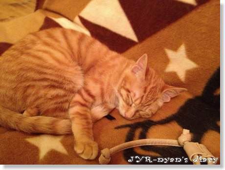 shizuku130303_2