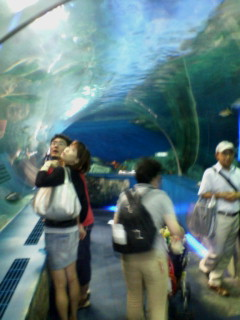 オフ水族館