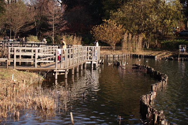 つかさのブログ-洗足池