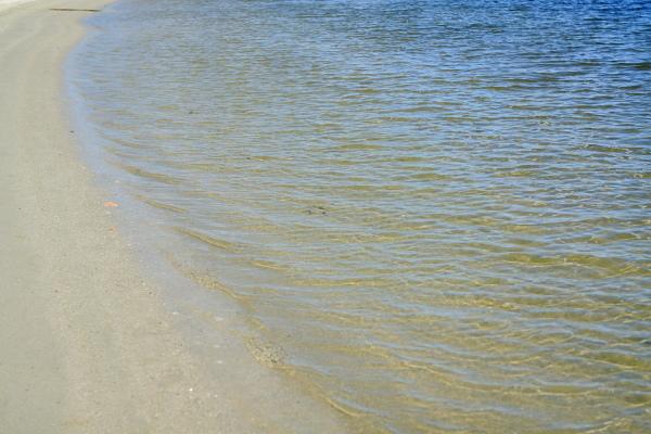つかさのブログ-大森ビーチ