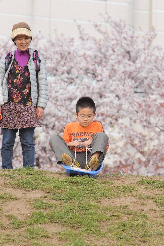 つかさのブログ-10土手桜