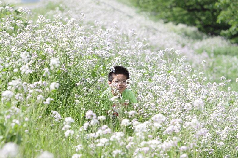 つかさのブログ-10草滑り