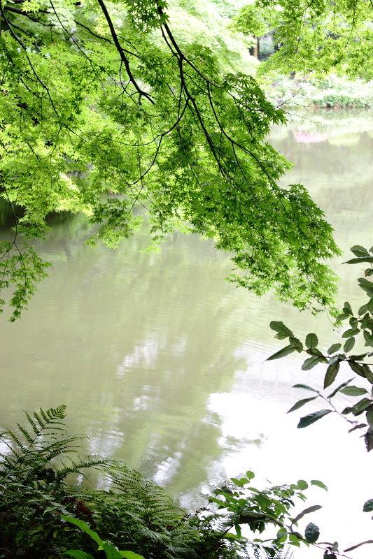 つかさのブログ-日比谷公園