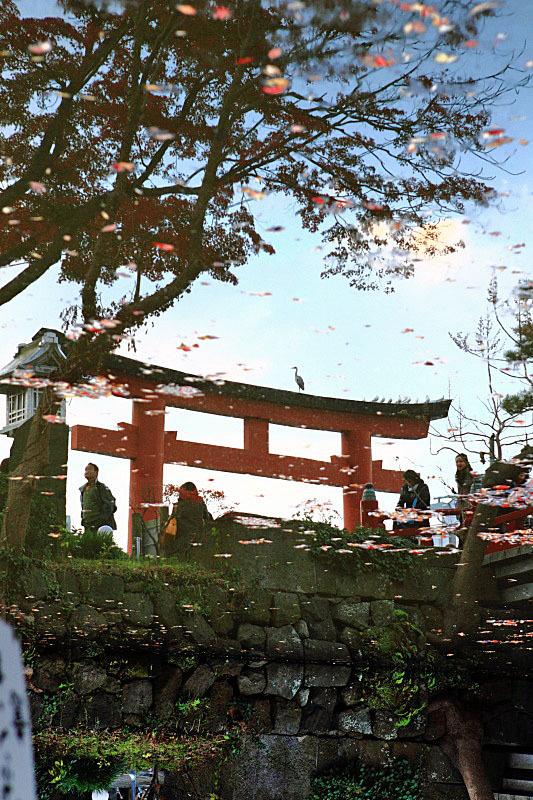 つかさのブログ-鎌倉