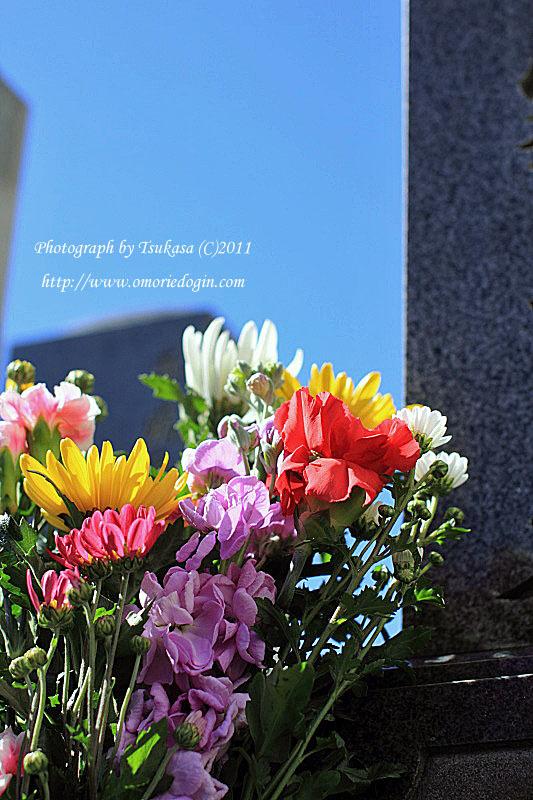 つかさのブログ-雛祭り
