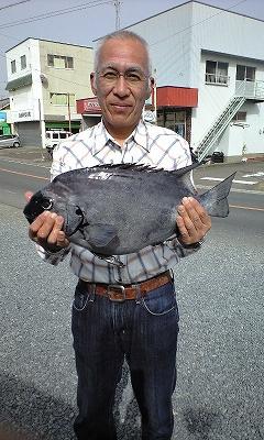 yokoyama.ishitai