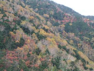 2010_1018okunikko0063.jpg