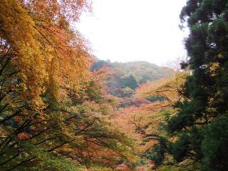 2010_1115houraisan0027.jpg