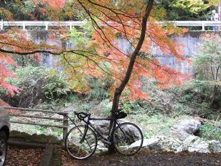 2010_1115houraisan0031.jpg
