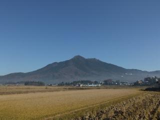 2010_1206tsukuba0009.jpg