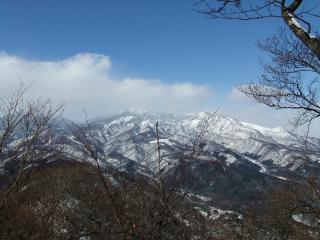 2011_0214nakimushi0041.jpg