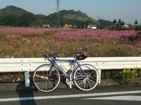 2011_1030karasawanuko0003.jpg