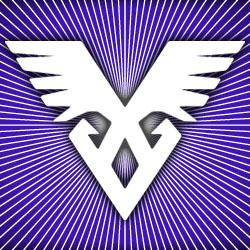 VIIM project