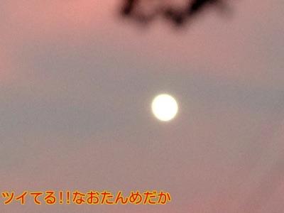 20141104203603589.jpg