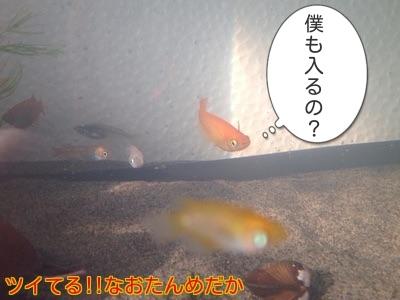 201412011957575c0.jpg