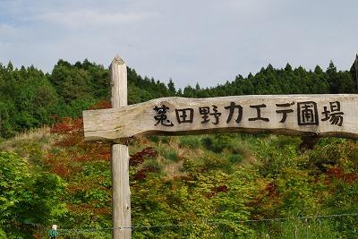 s-DSC_4379.jpg