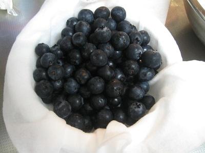 1ブルーベリー系1