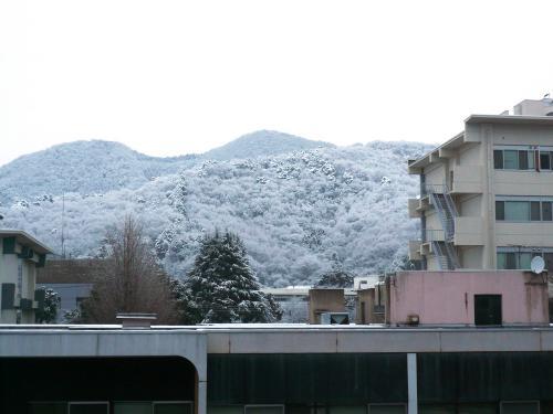 雪ふった1