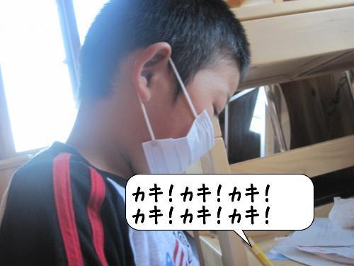 20100909_002226.jpg