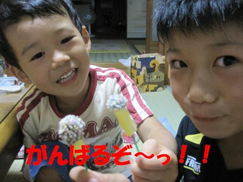IMG_3540_convert_20110922231920.jpg