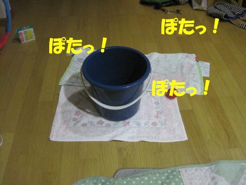 IMG_3549_convert_20110922232032.jpg