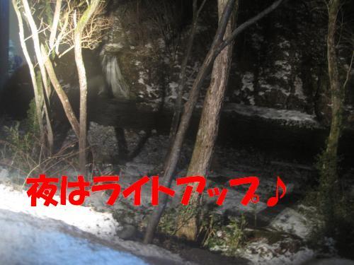 IMG_3778_convert_20120301234503.jpg