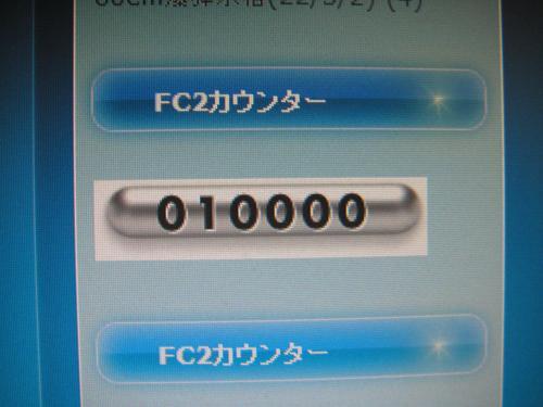 PA280133_convert_20101028151506.jpg