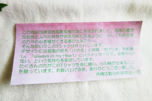 okinawa-aimh (2)