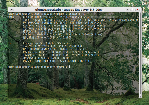 Ubuntu 端末 背景を透明にする