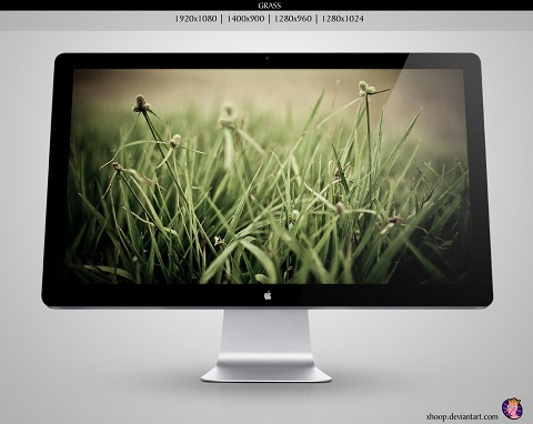 Ubuntu 壁紙 Grass-wallpaper