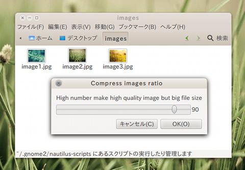 Compress image Ubuntu Nautilus 画像圧縮
