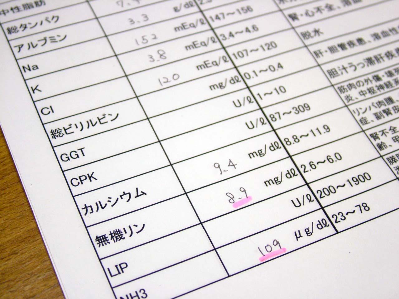 検査結果表2