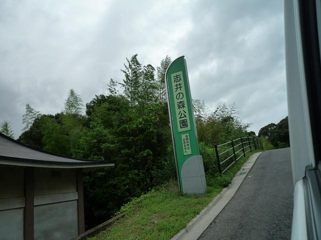 志井鉱山跡1355