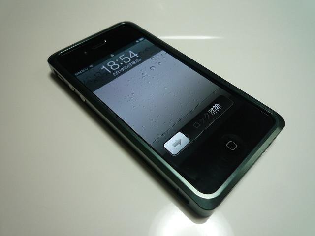 P1100161s.jpg