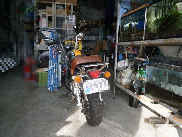 P1390836s.jpg