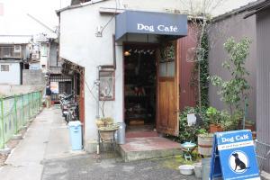 ドッグカフェ1