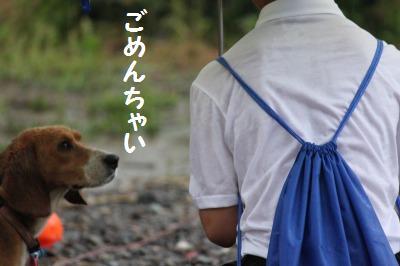 雨天決行5