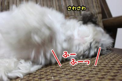 息リフレッシュ4