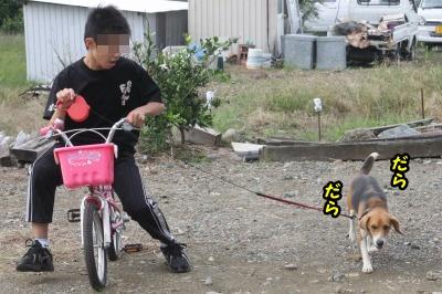 小さい自転車バージョン