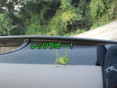 さっさと運転しな!