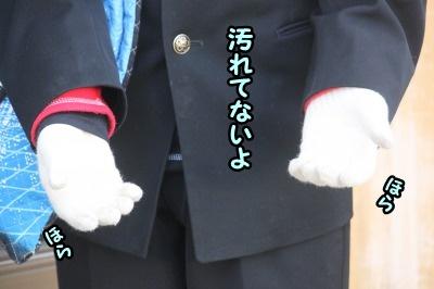 おにぃちゃんの手袋