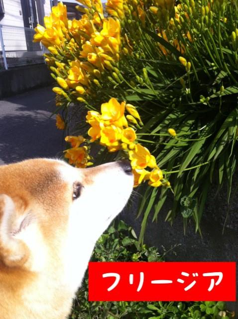 moblog_76349607.jpg