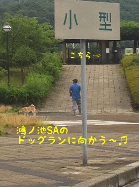 moblog_93c29fa8.jpg