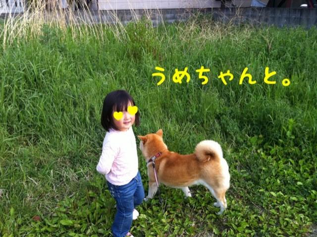moblog_a4ffaba9.jpg