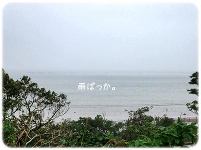 2013_12170011.jpg