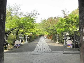 kyoto301.jpg