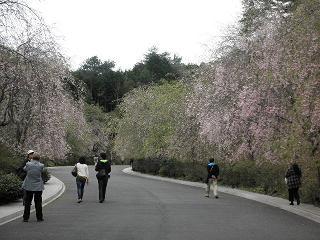 kyoto309.jpg