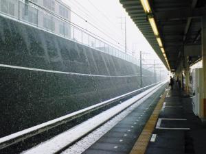 2012年02月29日_NEC_0314