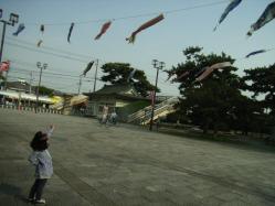 浜寺公園の鯉のぼり