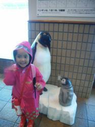 はいペンギン